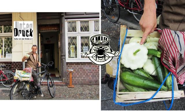 bienenwerder unterdruck organic delivery